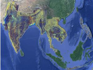 Satellite imagery to soon enable large-scale monitoring of Asia's rice areas